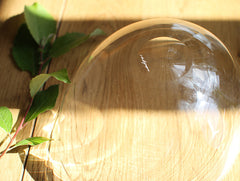 Clear Lotus Bowl by Studio Prepa at OEN Shop