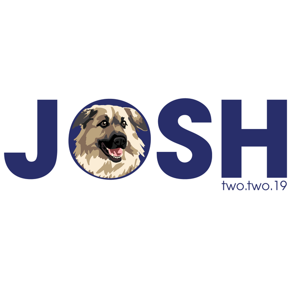 Dog Bar Mitzvah Logo Design