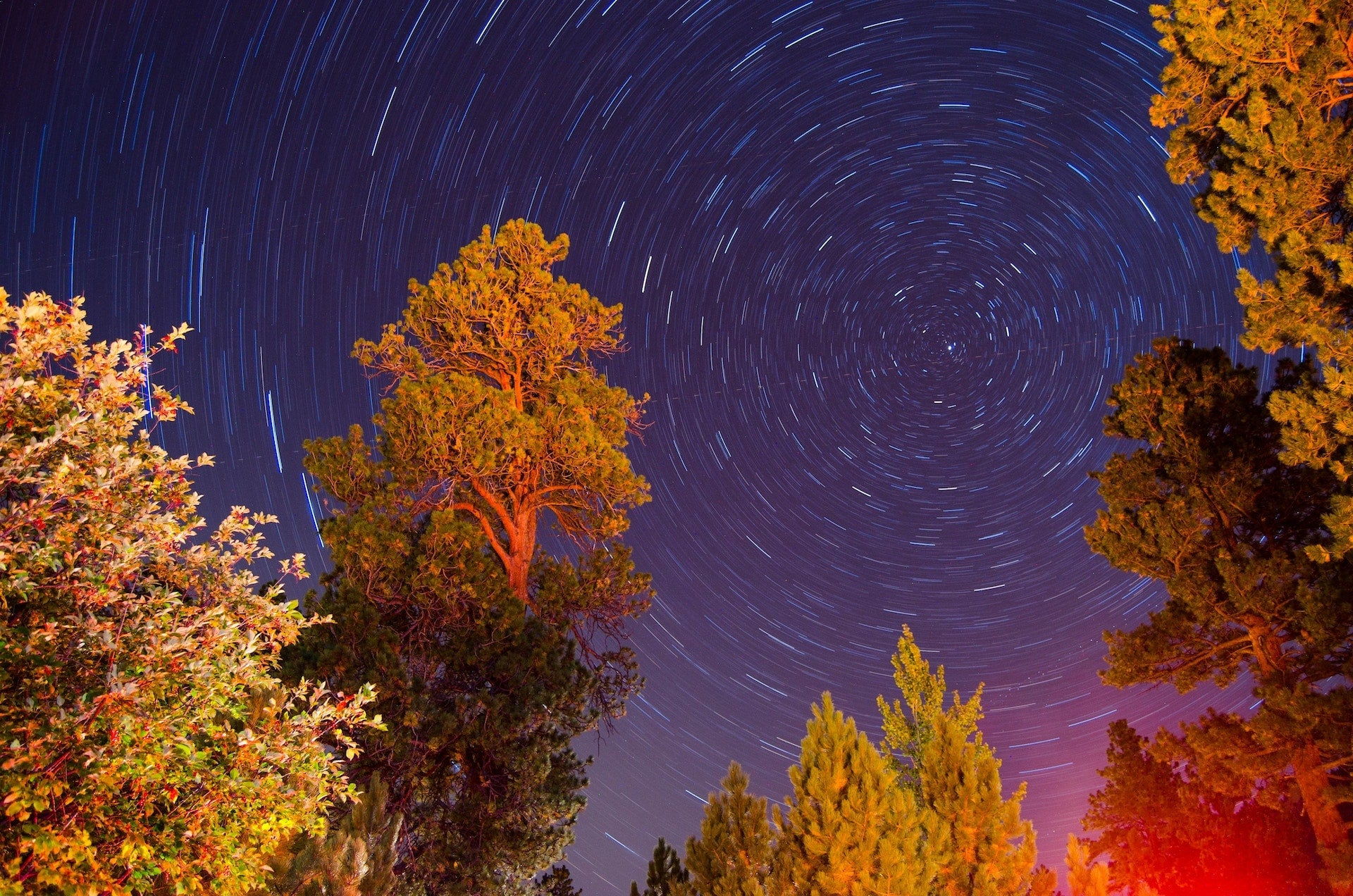 How to Take Star Trails