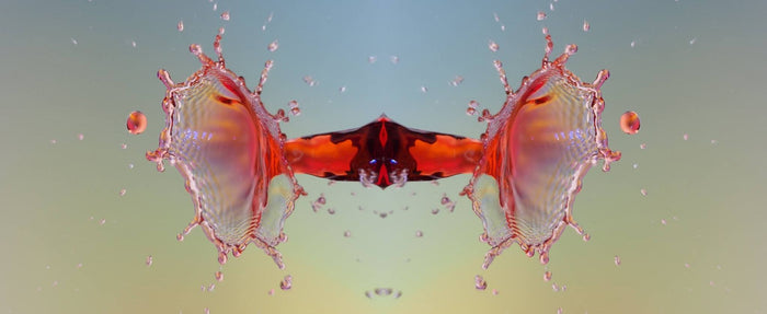 9 Tips for Choosing the Best Water Drop Photography Kit