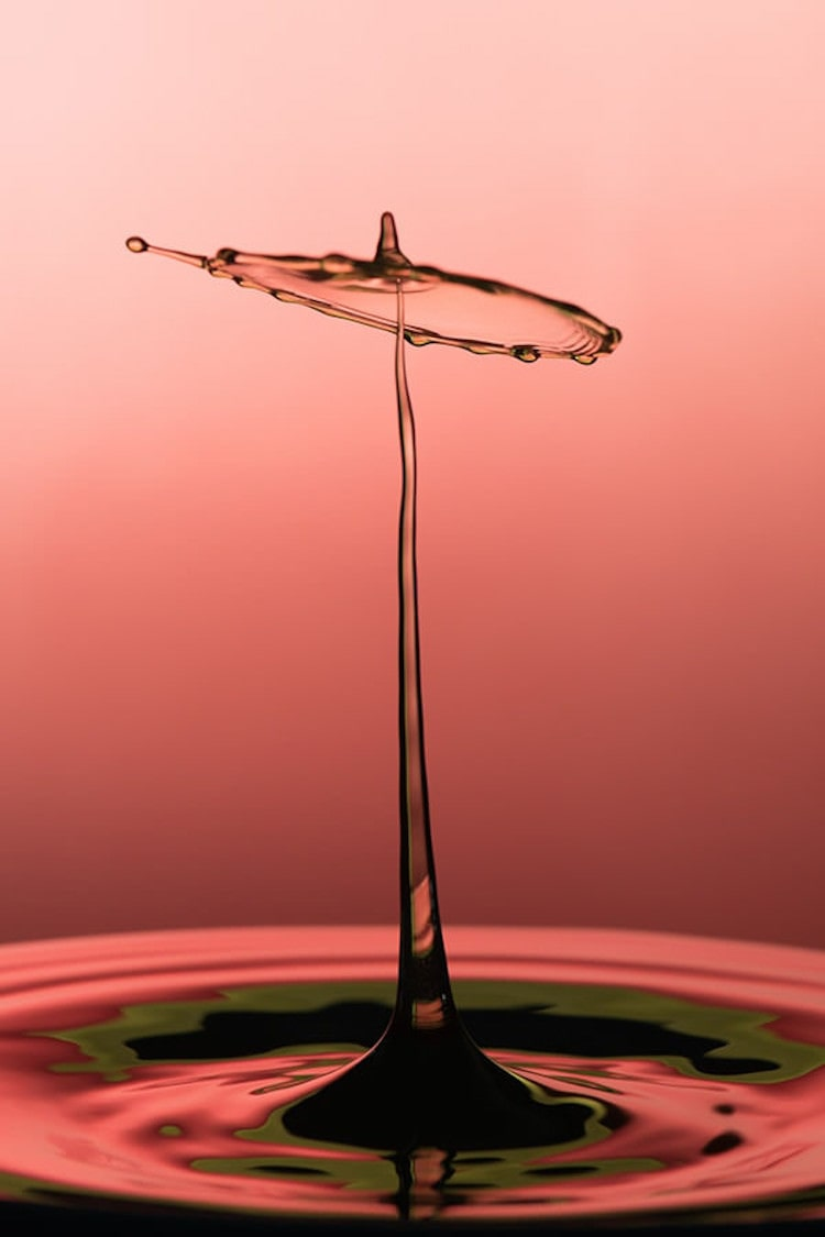 The Step by Step Guide to Water Drop Photography