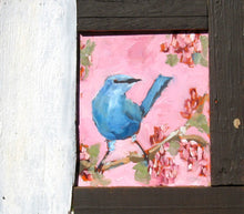 Load image into Gallery viewer, Blue wren on a pink background with red berries.