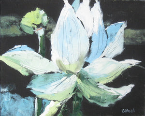 Water lily in oil paint on canvas