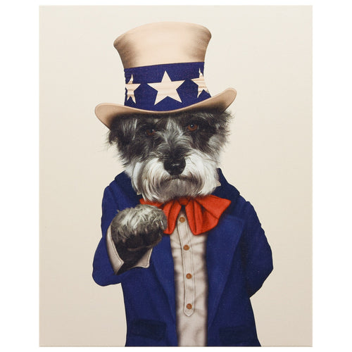 Pets Rock Uncle Sam