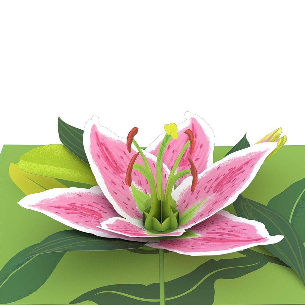 Lovepop 3D Greeting Card Lily