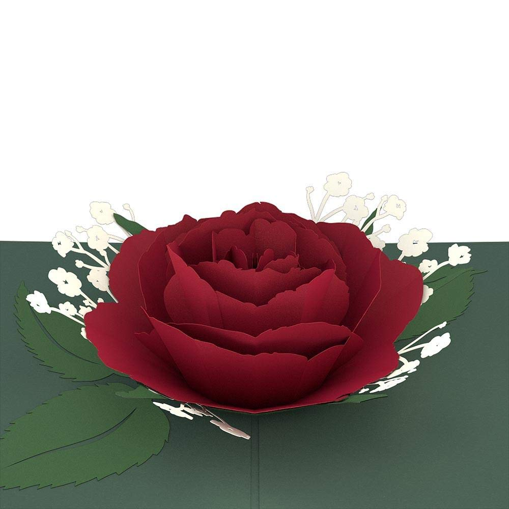 Romance Card 3D Card Greeting Card Anniversary Card Valentines Day Card Lovepop Garden Rose Bloom Pop Up Card Card for Mom Card for Wife