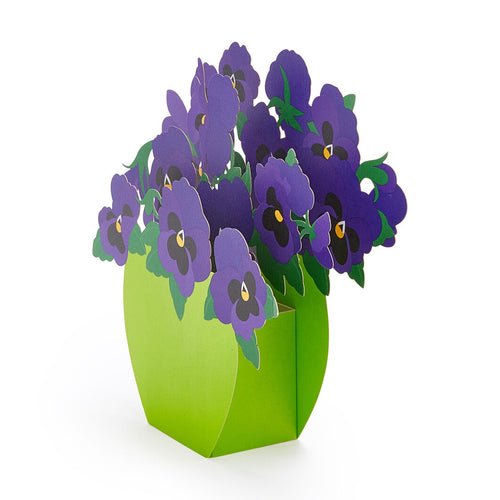 Pop-Up Note Cards Playful Pansies