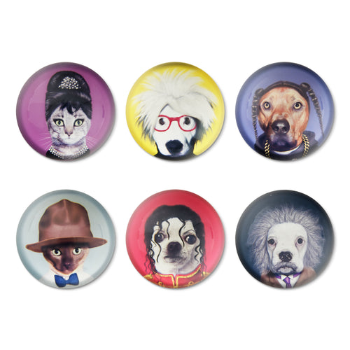 Pets Rock Magnets Set/6