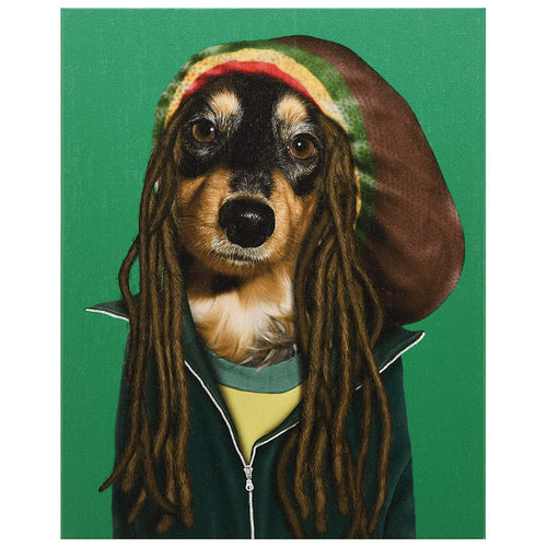 Pets Rock Reggae Graphic