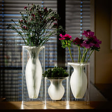 A dual layer glass vase featuring a transparent cylindrical outer layer and a frosted glass finish inner layer which holds flowers.
