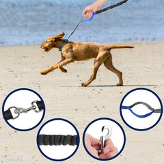 Zenify Hands Free Dog Lead
