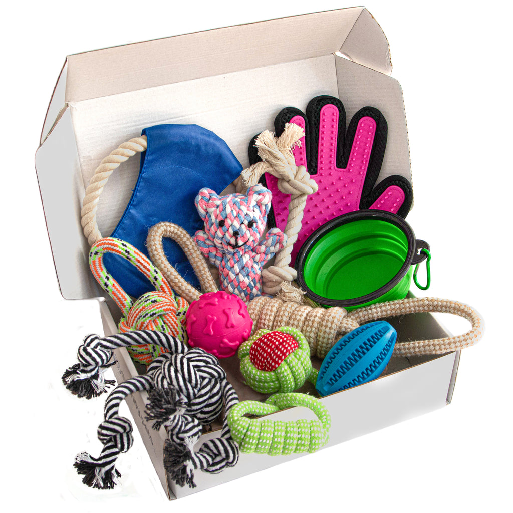 Zenify Puppy Dog Toys Gift Box