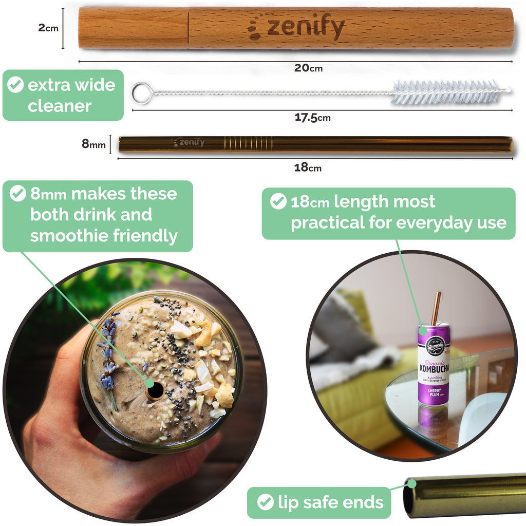 Zenify Reusable Metal Straw with Case - Gold