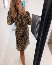 Erika long sleeved dress leo/lurex