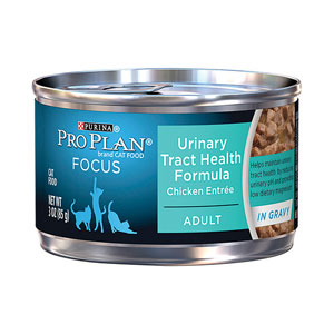 Pro Plan Focus Adult Urinary Tract Health Chicken Entree Canned Wet Cat Food at NJPetSupply.com