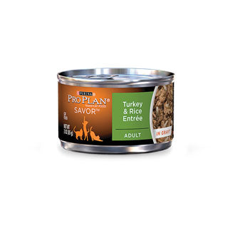 Pro Plan Adult Turkey & Rice Entree Canned Cat Food