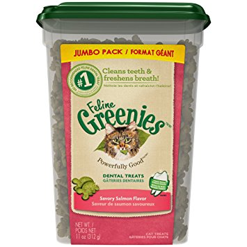 Feline Greenies Dental Cat Treats,  Salmon Flavor 11-oz at NJPetSupply.com