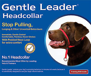 Premier Gentle Leader Headcollar