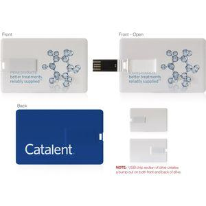 2GB USB Flash Drive w/ Catalent Brochures