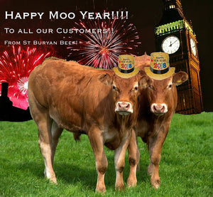 Happy Moo Year