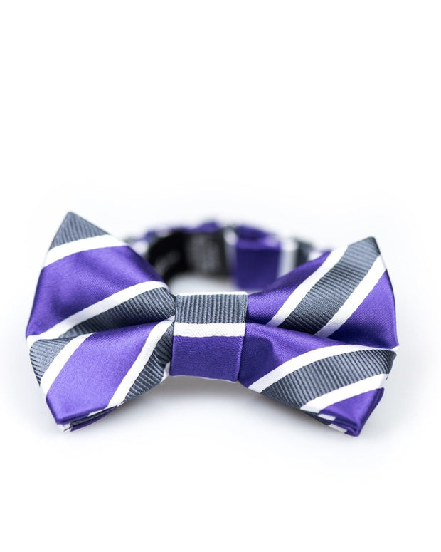 Royal Purple Stripe Bow Tie (Boys and Men)