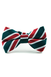 Evergreen and Ruby Stripe Tie