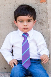 Violet and Aqua Stripe Zipper Tie (Boys and Men)
