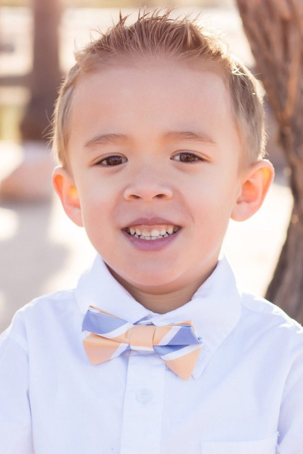 Light Blue and Peach Stripe Bow Tie (Boys and Men)