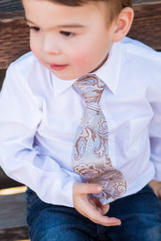 Silver and Caramel Paisley Tie