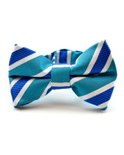 Teal and Sapphire Stripe Bow Tie (Boys and Men)