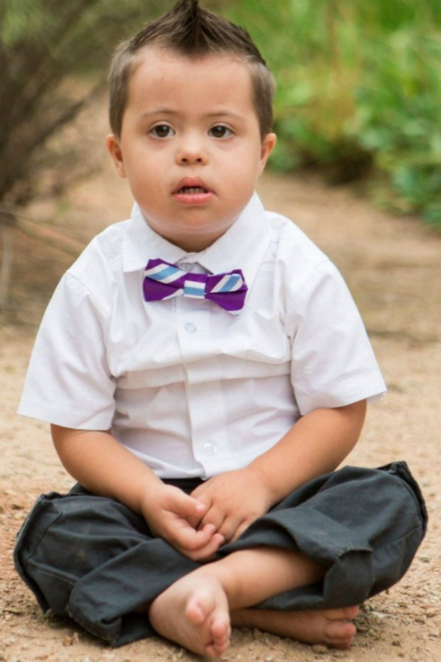 Violet and Blue Stripe Bow Tie (Boys and Men)