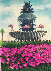 """Flamingos and Pineapple Fountain"""