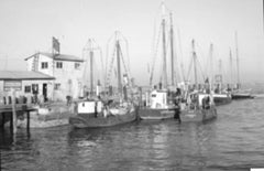 """Charleston Harbor , 1937"""