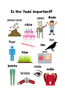 Gaeilge Poster: Is the fada important? #2