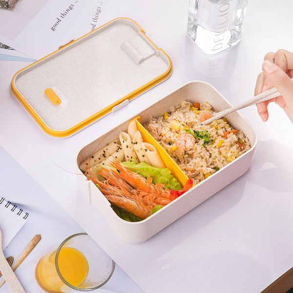 Brilliant Basics Dual Tone Meal Pack