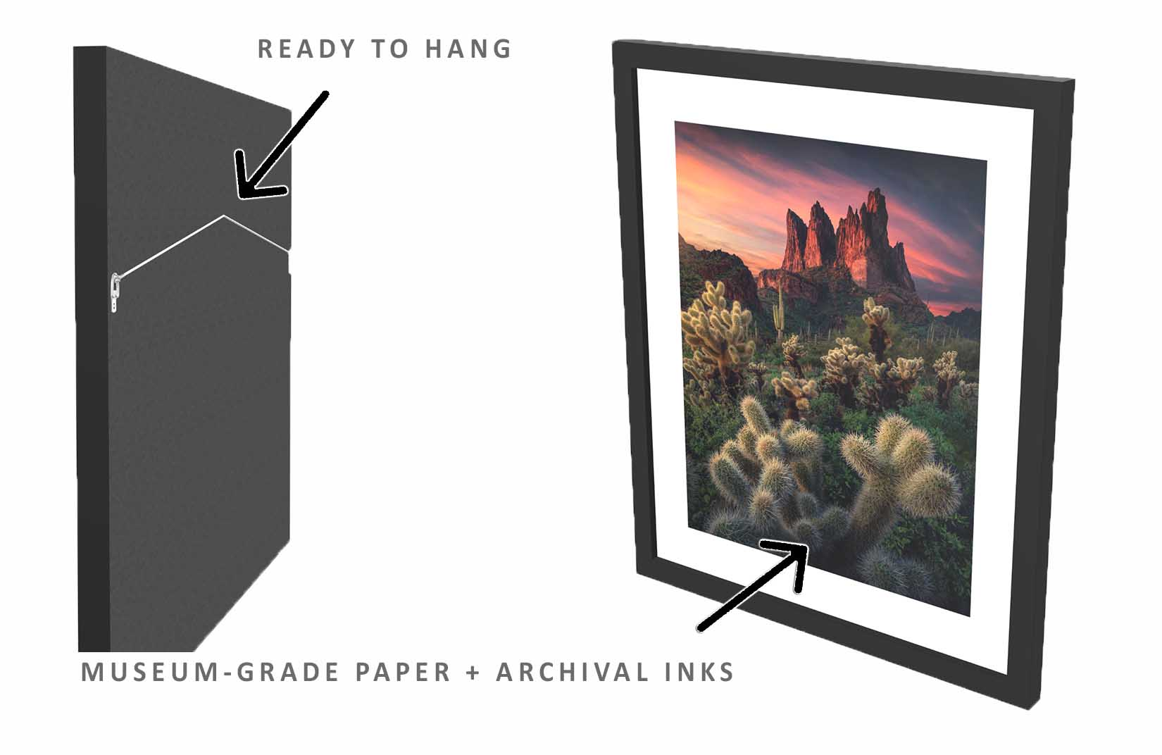 Tonto-National-Forest-Print-material-3d-view-front-and-back