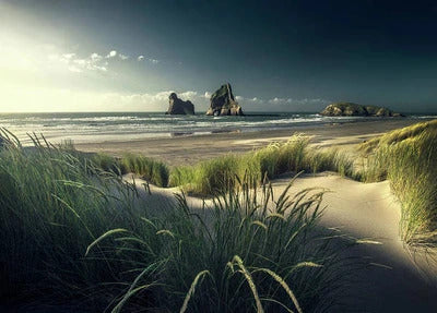 files/at-the-beach-max-rive.jpg