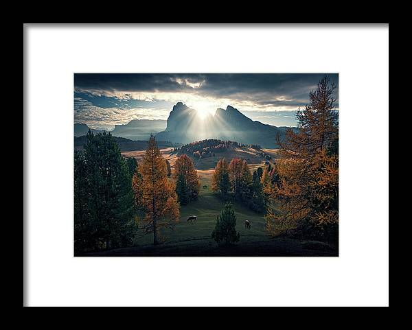A New Start - Framed Print