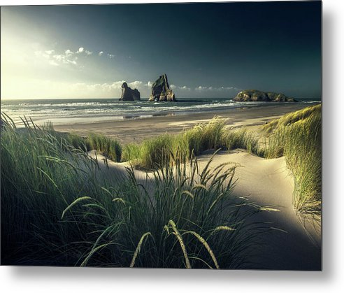 At the Beach - Metal Print