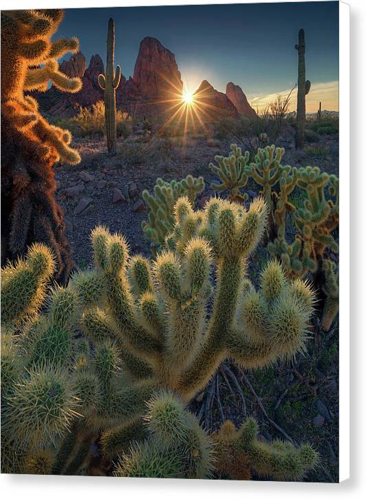 Deserts of California - Canvas Print