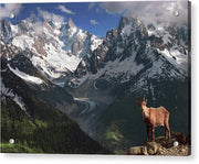 Inhabitant of the Alps - Acrylic Print
