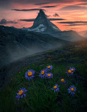 Matterhorn Sunset - Metal Print