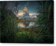 Milford Sound - Canvas Print