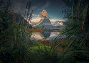 Milford Sound - Metal Print