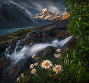 Mount Cook Print displaying flowers and a waterfall in summer