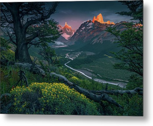 The First Light - Metal Print