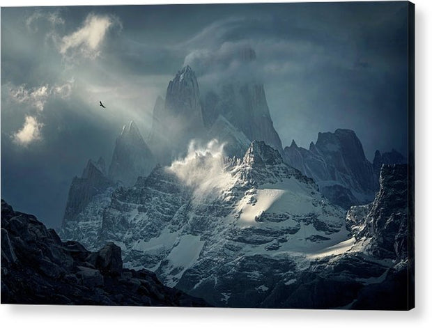 The Last Flight - Acrylic Print