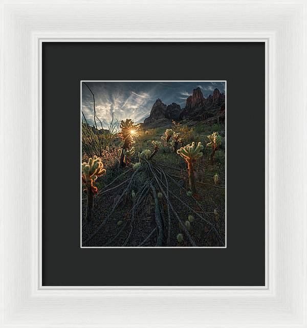 Welcome the Warmth - Framed Print