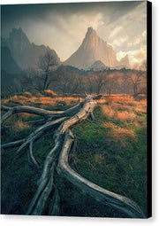 Zion National Park - Canvas Print