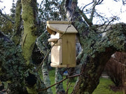 Cherry Acres Nest Box